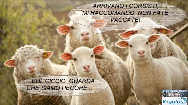 KL Cesec CV 2014.02.21 Pecore