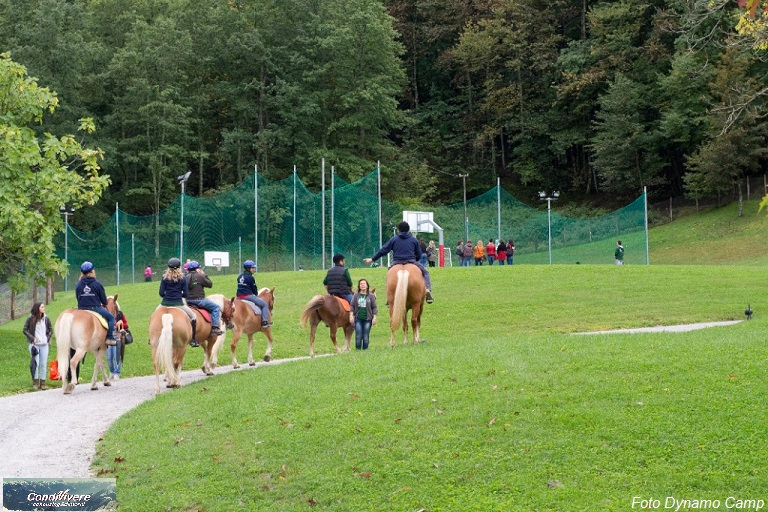 KL Cesec CV 2014.03.20 Dynamo Camp 005