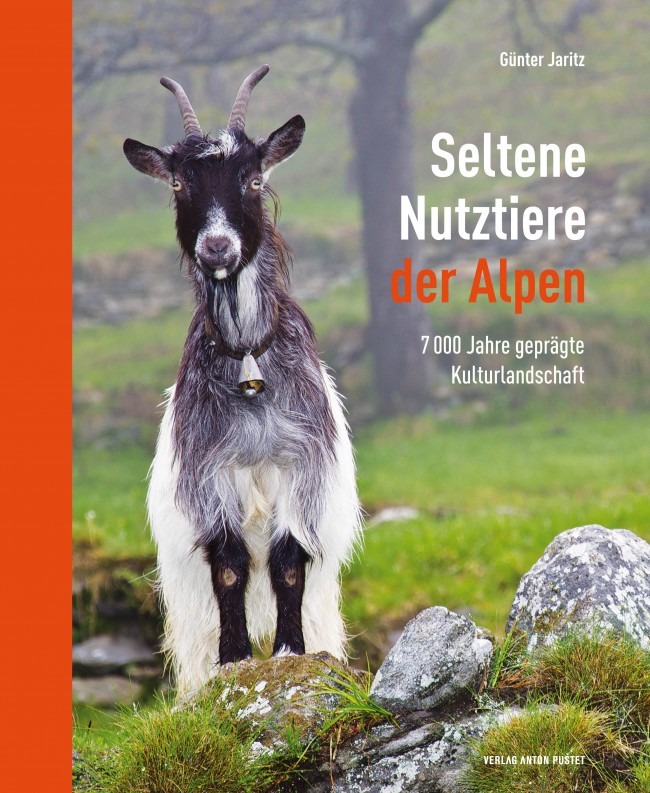 thumb_nutziere_cover_neu_650_