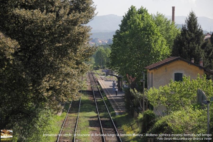 Cesec-CondiVivere 2015.06.10 Abbattimento Alberi Ferrovia Brianza 001