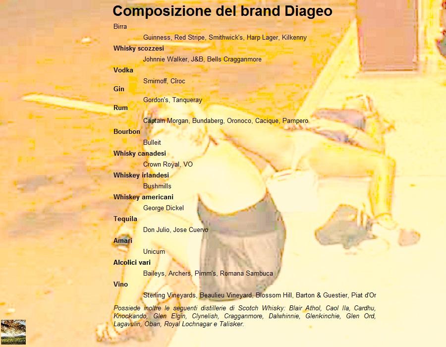Cesec-CondiVivere 2015.07.09 Partecipazioni Diageo